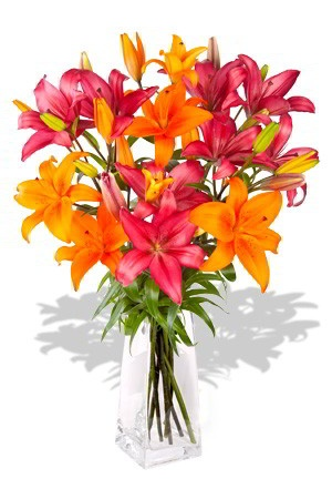 Glowing Lilies    Glowing Lilies is so full of wondrous colour with its fantastic multi coloured Asiatic Lilies that this never-to be-forgotten beautifully ribboned bouquet will if not sweep your special someone off their feet, will certainly be the reason for a big beaming smile! $68.94