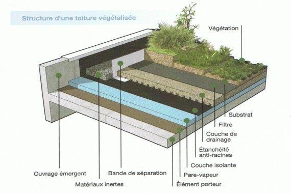 Coupe étanchéité toiture végétalisée