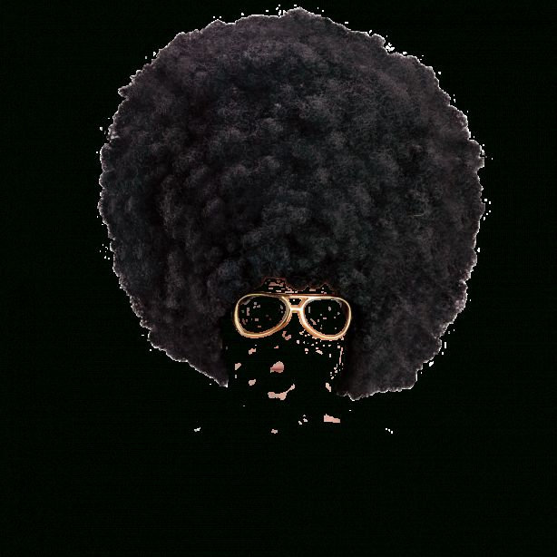 10 Afro Hair Png Afro Hairstyles Hair Png Black Hair Afro