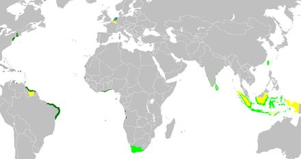 Articolo su Wikipedia sulla Compagnia delle Indie Occidentali
