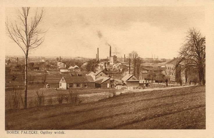 Piękna pocztówka z około 1920 roku, przedstawiająca widok na Borek Fałęcki. Panorama w kierunku Podgórza, w tle widoczna sylwetka fortu Krzemionki.