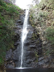 Tell me have you walked Mt Lofty lately?  Waterfall Gully Adelaide South Australia - maybe