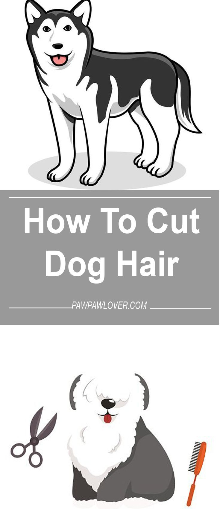 How To Give A Haircut At Home The Best Haircut Of 2018