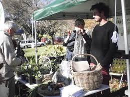 railway street farmers market moss vale