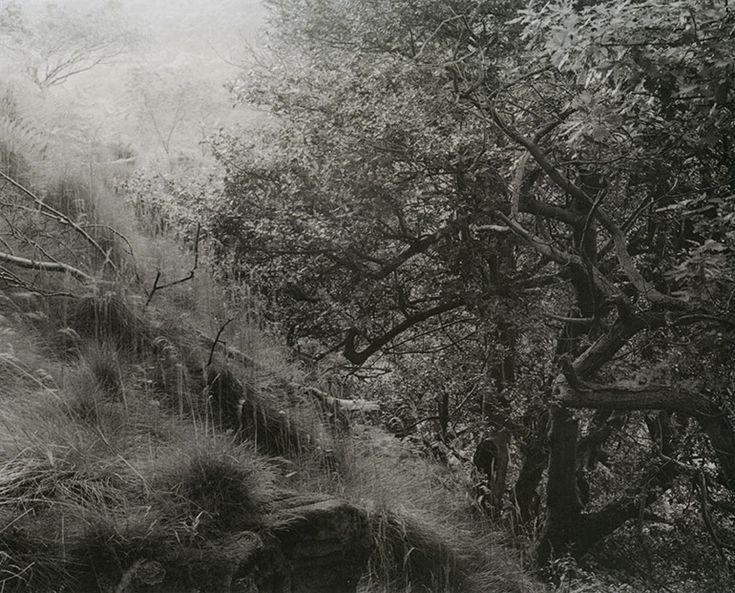John Blakemore | Master Photographer | On Landscape