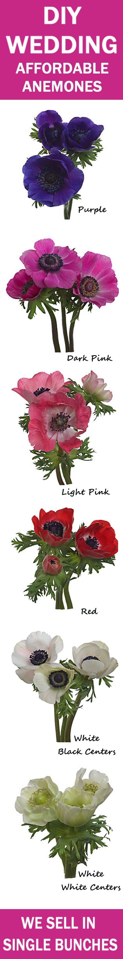 Anemone Bridal Bouquet - Easy Wedding Flower Tutorials  Learn how to make bridal bouquets, wedding corsages, groom boutonnieres, church decorations, pew ends and reception decorations.  Buy fresh flowers and discount florist supplies.