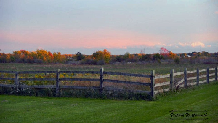 Wooden Fence In The Fall