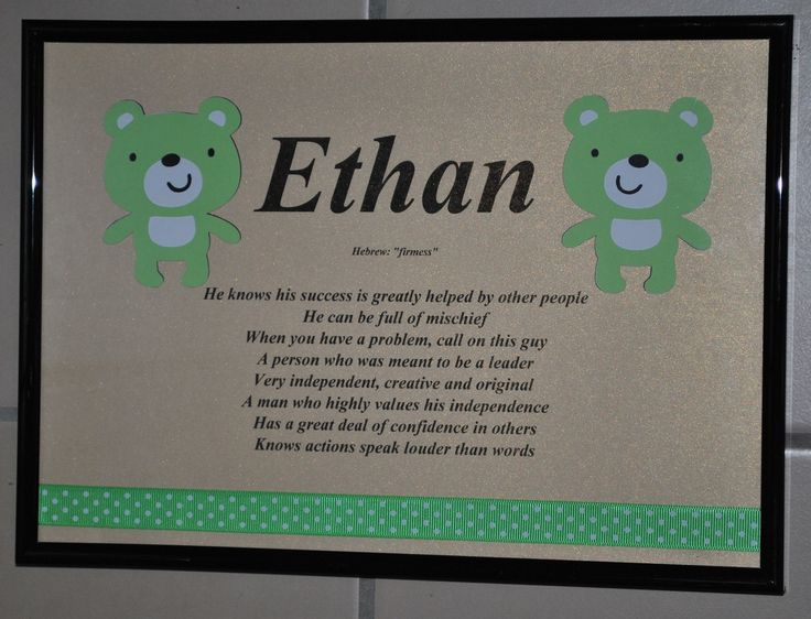 Teddy Bear Name Meaning