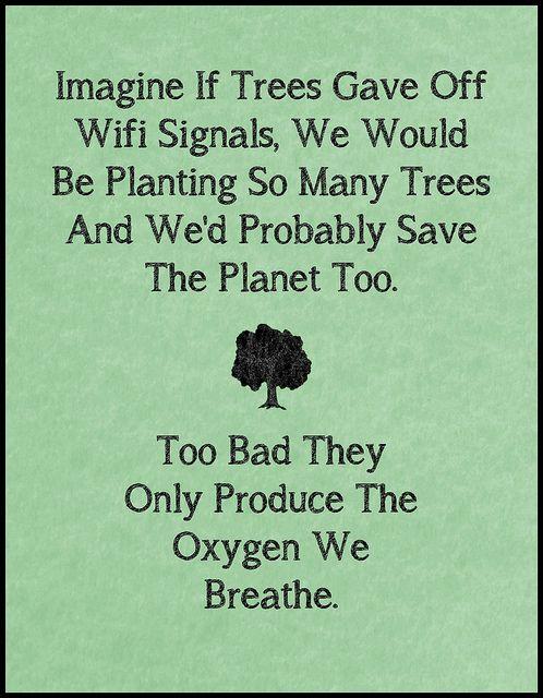 """""""Imagina que los árboles tuvieran Wifi, plantaríamos un montón de ellos y probablemente salvaríamos el planeta también... Es una pena que solo produzcan el oxígeno que respiramos""""."""