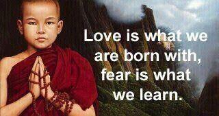 Amor es con lo que nacemos, Miedo es lo que aprendemos. -Buddha                                                                                                                                                     More