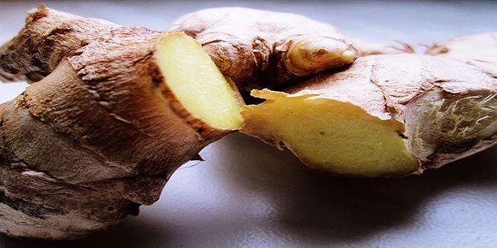 Gember wordt genoemd in oude Chinese, Indiase en Midden-Oosterse schrijven, en was gedurende duizenden jaren geroemd om zijn culinaire en geneeskrachtige eigenschappen. Gember is rijk aan kalium en…