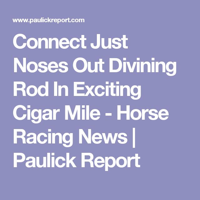 Connect Just Noses Out Divining Rod In Exciting Cigar Mile - Horse Racing News | Paulick Report