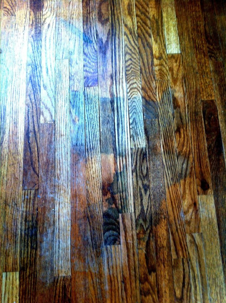 Removing Urine Stains From Hardwood Floors Urine stains