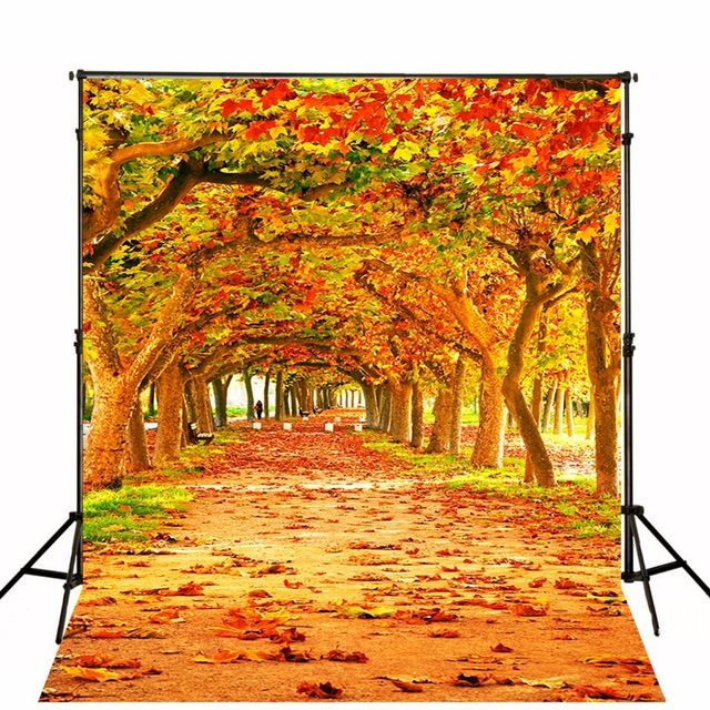 2017 Spring Scenic Photographic Backgrounds Children Photo Backdrops Toile De Fond Backdrops Vinyl Backgrounds For Photo Studio
