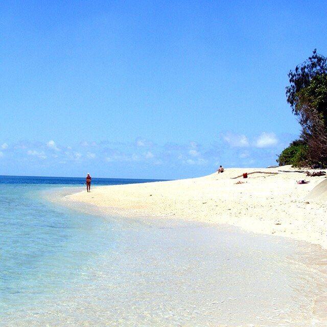 Stop 4: #Cairns #Australia  Muista myös #Fitzroy Island: trooppinen #saari jolla on oma #sademetsä ja #koralliriutta! WHAAAAAT?!  #traveltip #matkavinkki #wow #sukellus #snorklaus #paratiisi #island #FitzroyIsland #letsgo #jokomennään #relax #chillax #reppureissaus #matkakuume #travelbug #instatravel #explorelife #kilroyfinland by kilroyfinland