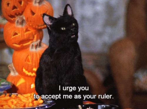 Pin for Later: 39 Salem Saberhagen Quotes You Should Start Using Immediately When Anyone Compliments You About Anything