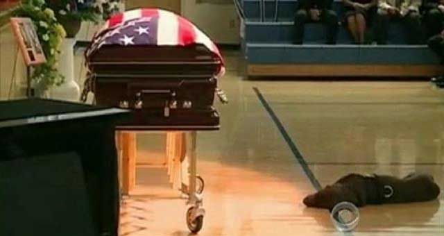 Petty Officer 1st Class Jon T. Tumilson's soldier dog mourns owners loss