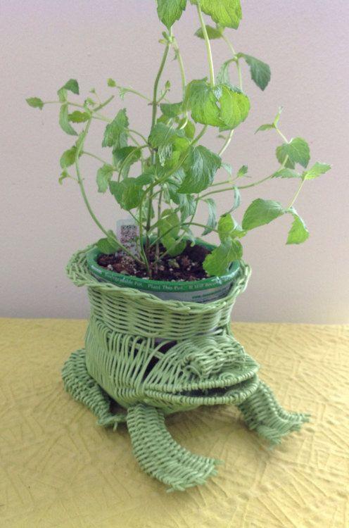 Shabby Chic Green Frog Wicker Basket Planter   @Lindsey Grande Dominguez   Wicker Paradise Blog.