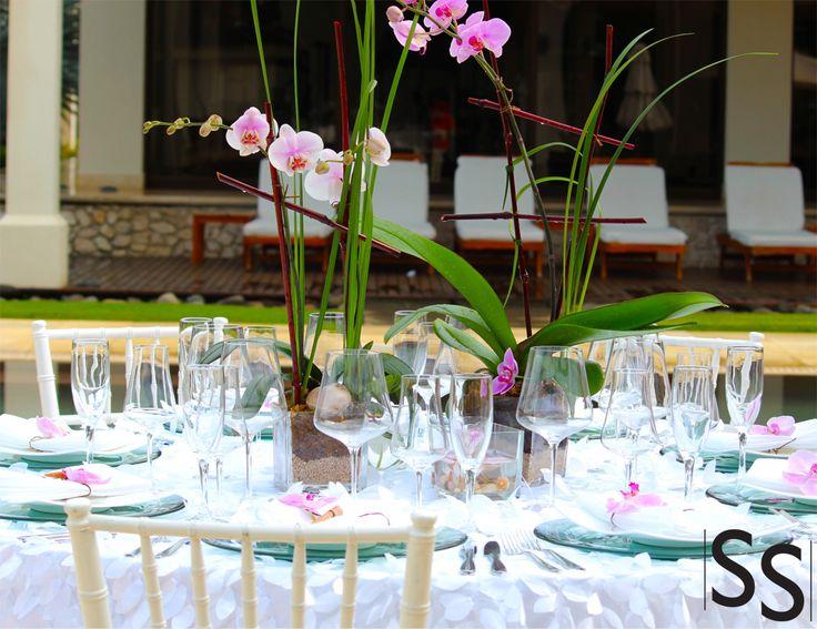 Evento de orquídeas/Orchids Event