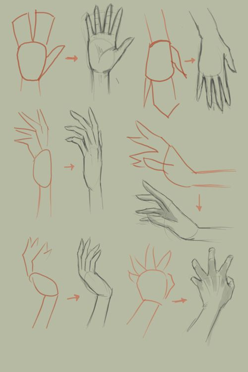 How to draw hands. An art tutorial ♥♡