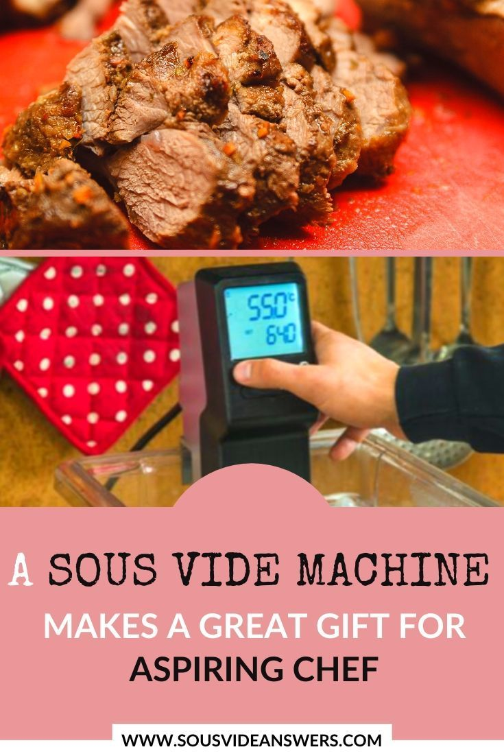 A Sous Vide Cooker Is A Perfect Gift For Anyone Who Cooks It Lets