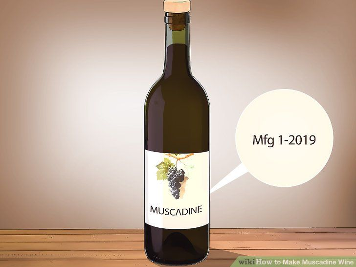 How To Make Muscadine Wine With Pictures In 2020 Muscadine Wine Wine Homemade Wine