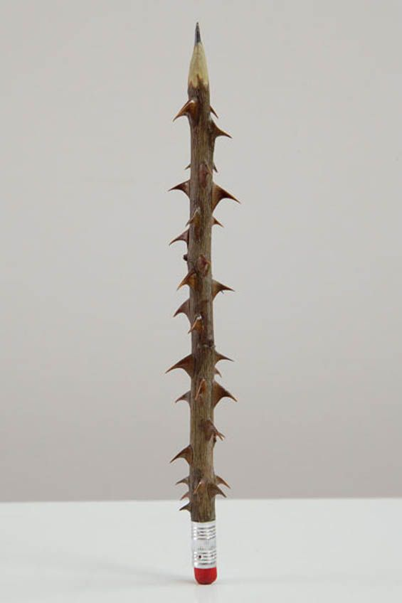 Seyo Cizmic - Rose stem, pencil lead and eraser