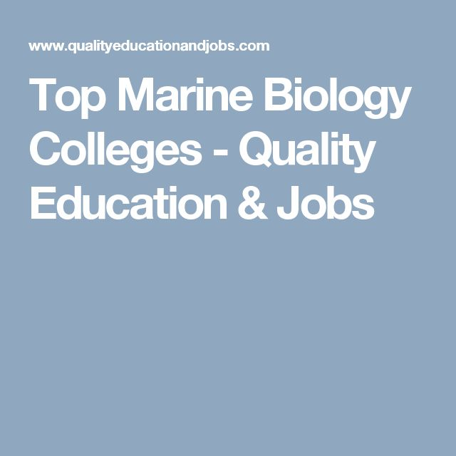 Top Marine Biology Colleges  Quality Education  Jobs  School