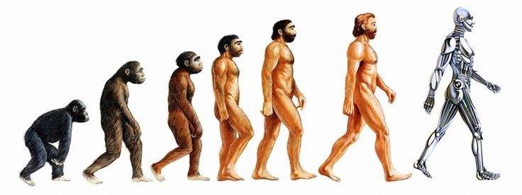 SEO e teoria dell'evoluzione di Charles Darwin