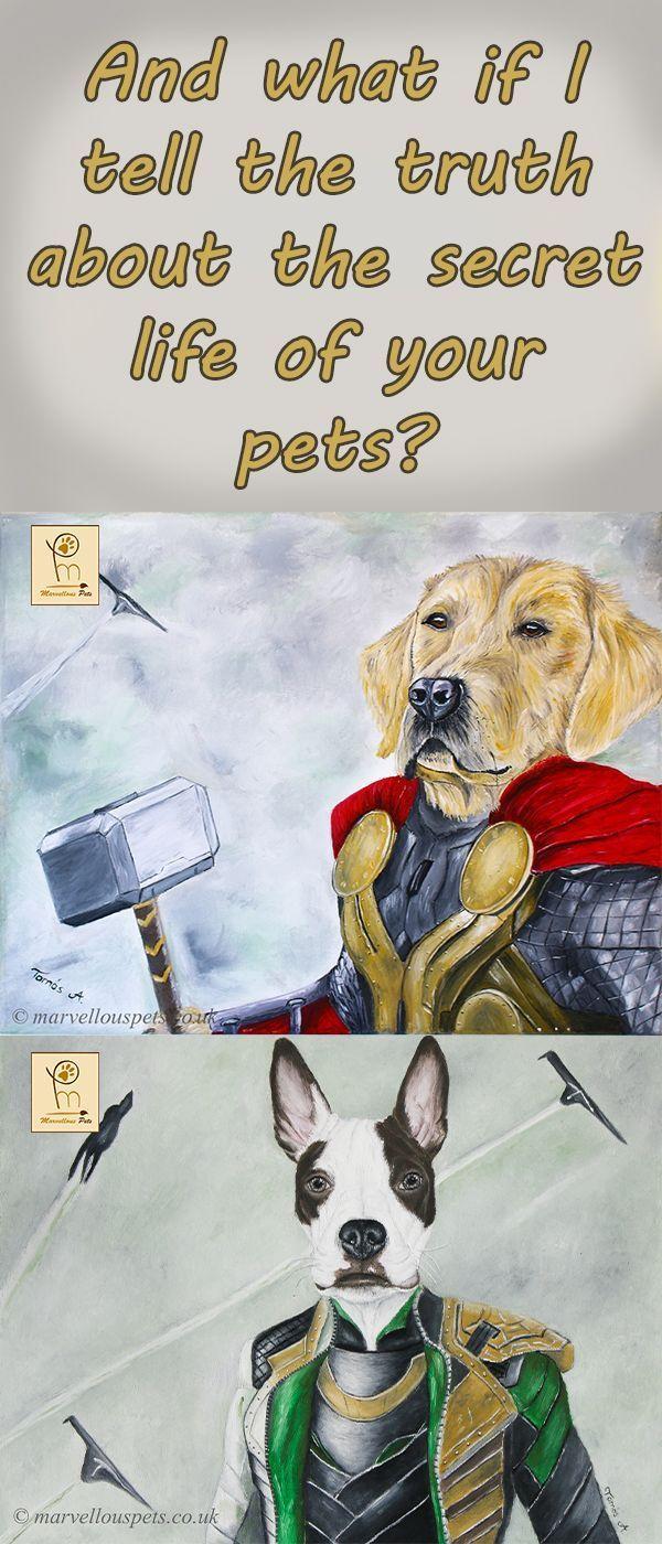Das Geheime Leben Der Tiere Wunderhelden Helden Superhelden Hundeportrat Loki Thor Hund Im Superheldenkostum Beste Geschenke Fur Hundeliebhabe Etsy Kostum