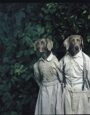 William Wegman- i like this picture because it humanizing dogs and dressing them like humans