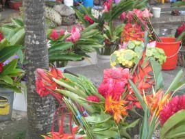 Port Villa: Vanuatu markets