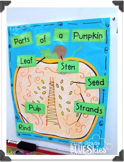 pumpkin anchor chart and many more cute pumpkin ideas!
