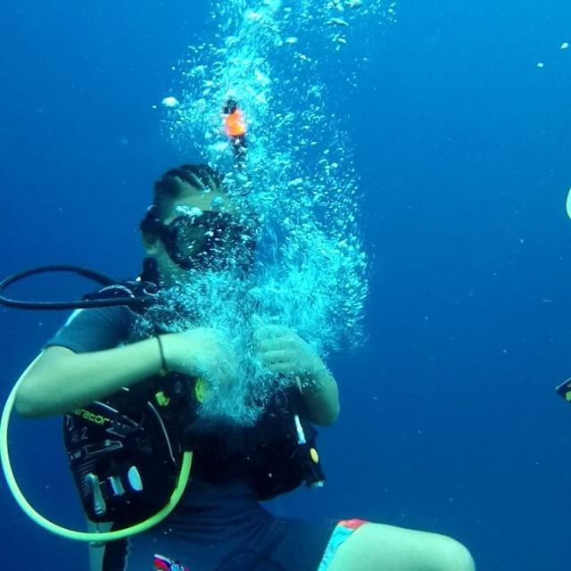 Time for the bubble ring challenge! Can you do this?    #bubbles #bubblering #scubadiving #diving #buceo #duiken #tauchen #padi #paditv #adventure #diveadventure #livingthedream #travel #vacation #gopro #curacao #caribbean #rightnowincuracao #photooftheday #follow #thedivebus