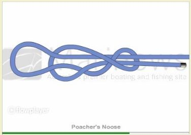Fishing knots the double and fishing on pinterest for Animated fishing knots