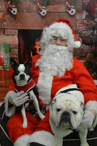 Bandit and Tank got their picture taken with Santa. Thanks to Sara Six for sharing!