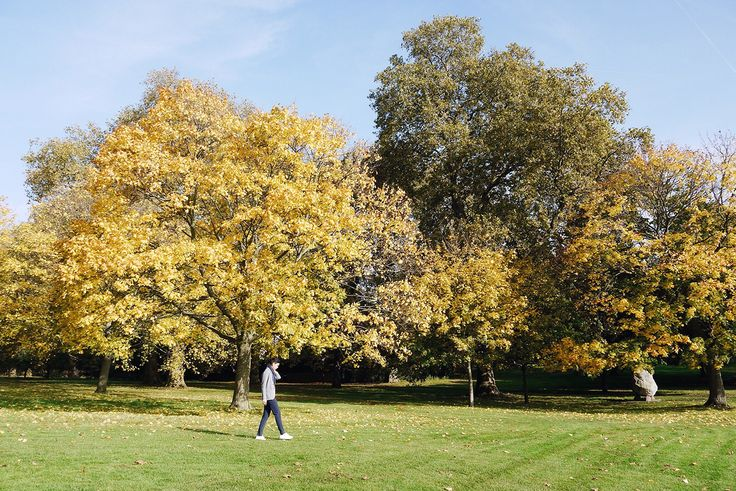 Autumn in London by Amé Story - Saturday exploration in Hyde Park