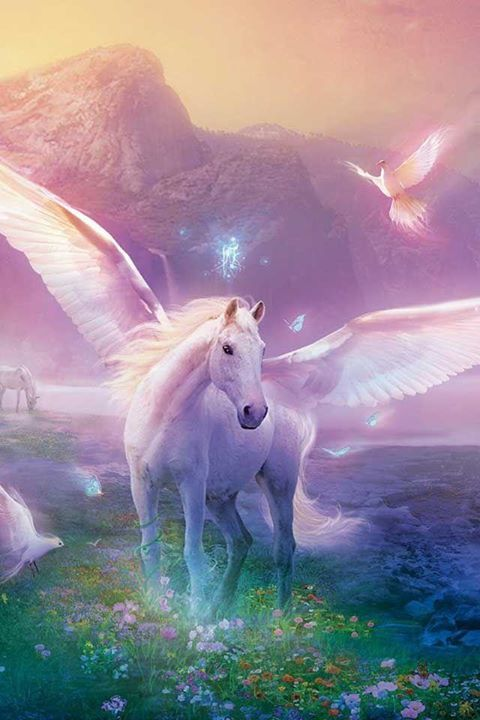 Fantasy rainbow Pegasus! I love it!