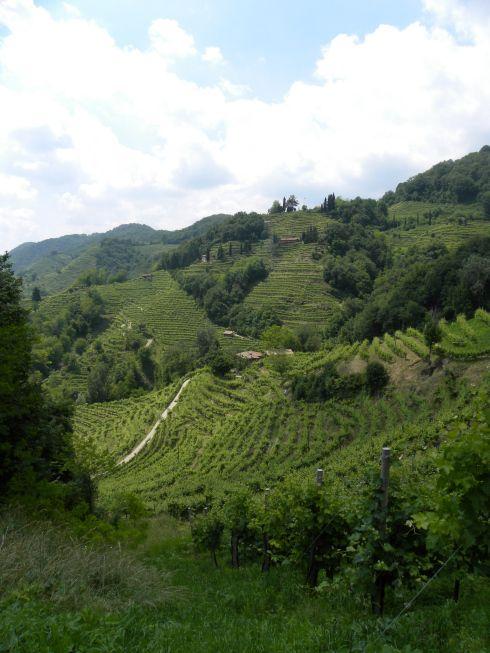 """Tra i 10 motivi per visitare il #Veneto del blog """"Grazie a te"""", al numero 6 troviamo gustare il Prosecco Superiore nelle colline di Valdobbiadene."""