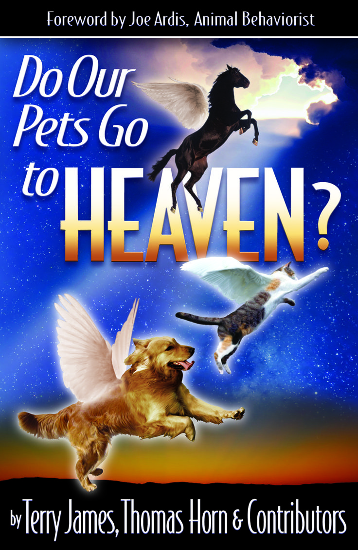 Do Our Pets Go To Heaven? The Bible Tells Me So Pinterest