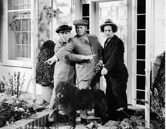 What Is the Oxford (or Serial) Comma?: The Three Stooges: Moe, Curly<b>, and</b> Larry (with an Oxford comma in front of <i>and</i>)