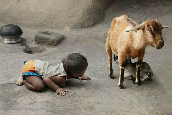 West Bengal, India. Photo by Kaushik Majumder