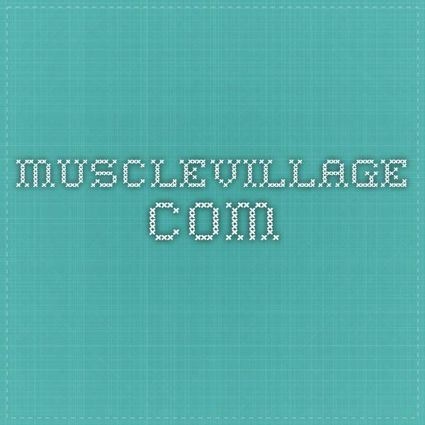 musclevillage.com