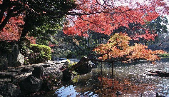 Koishikawa Korakuen (小石川後楽園, Koishikawa Kōrakuen) is one of Tokyo's oldest and best Japanese gardens. It was built by close relatives of the Tokugawa Shogun in the early Edo Period.
