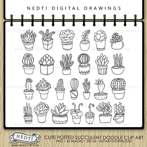 Potted Succulent Hand Drawn Clip Art Cactus Digital by Nedti
