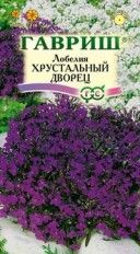 """Лобелия """"Хрустальный дворец"""""""