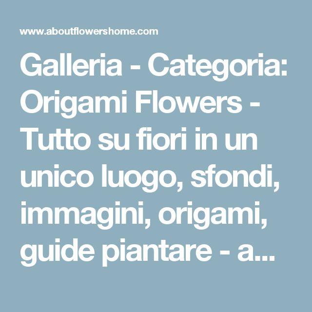 Galleria - Categoria: Origami Flowers - Tutto su fiori in un unico luogo, sfondi, immagini, origami, guide piantare - aboutflowershome.com