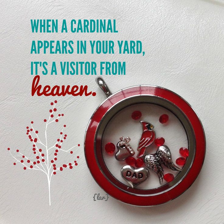 Tell your story with and Origami Owl locket. What's in your locket? https://skramer65.origamiowl.com