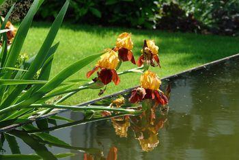 Bachläufe, Wasserspiele, Brunnen   Die Mögichkeiten, Das Element Wasser  Außerhalb Von Pools Und Teichen In Den Garten Zu Integrieren Sind  Vielfältig.