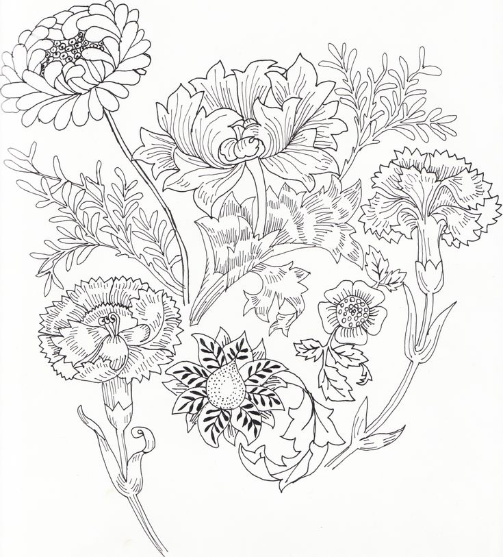 William Morris Colouring Pages Sketch Coloring Page